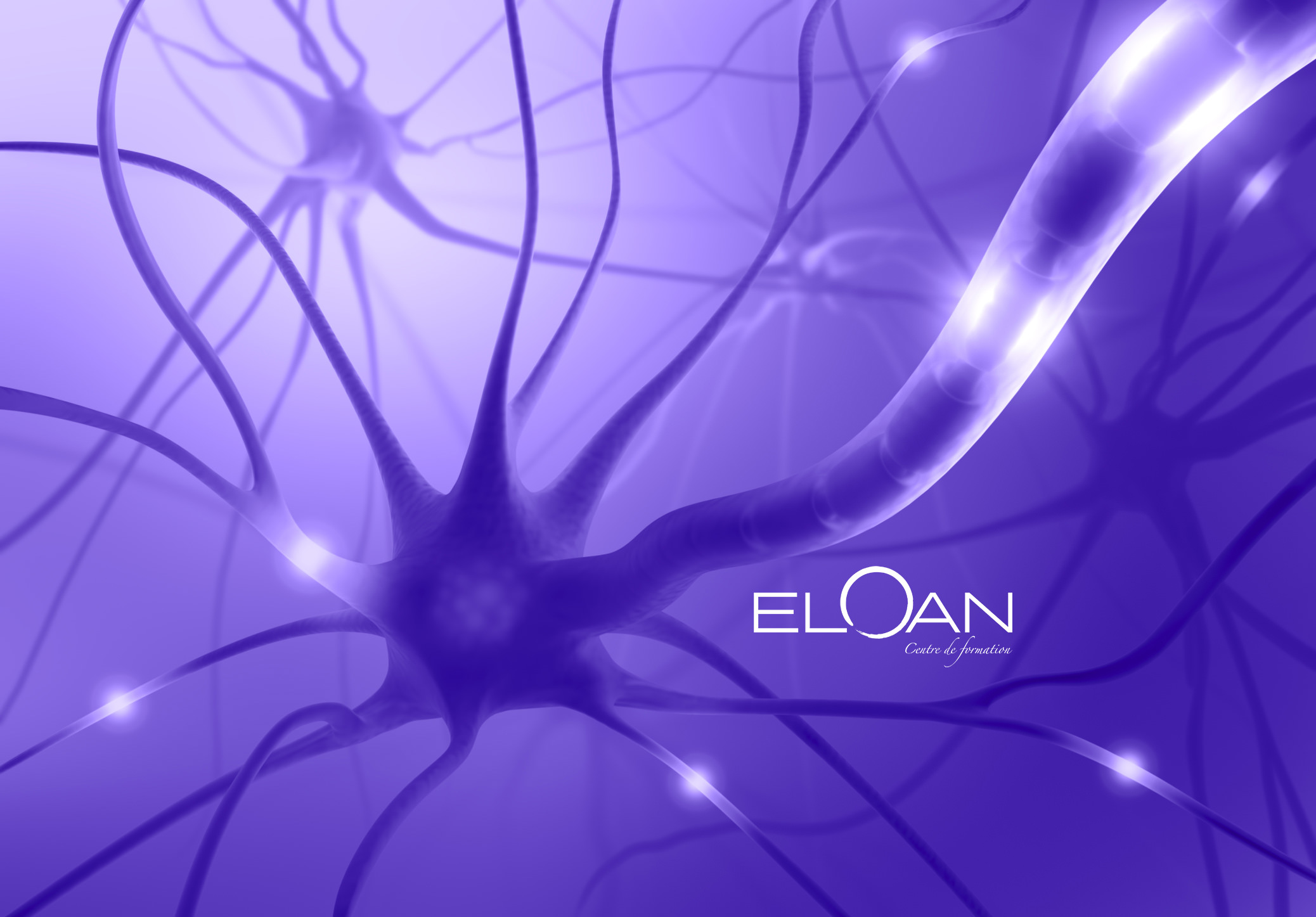Nerve Cell Axon